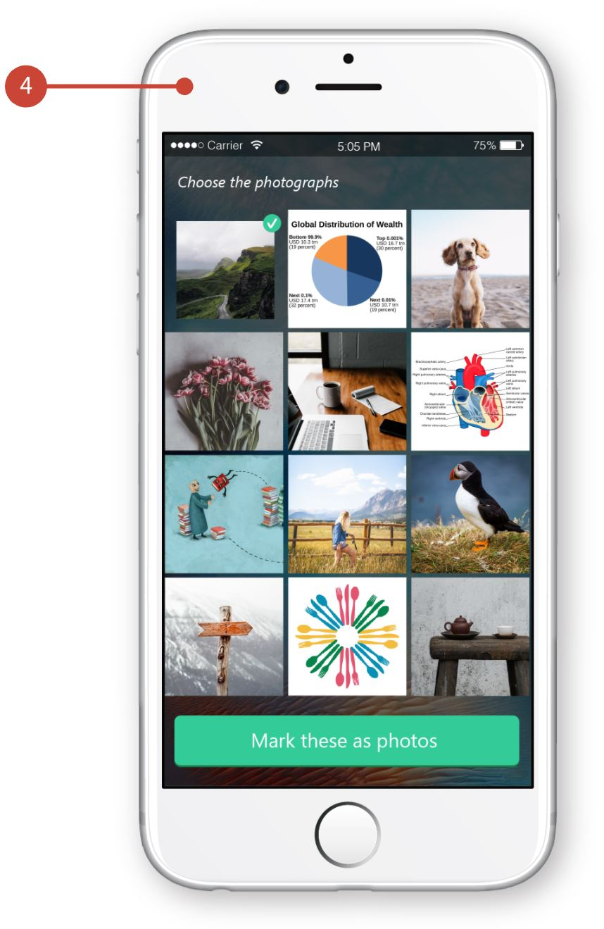 Graphic showing the photo filter app, which shows a grid of images. The user chooses the photographs in the set and submits them.