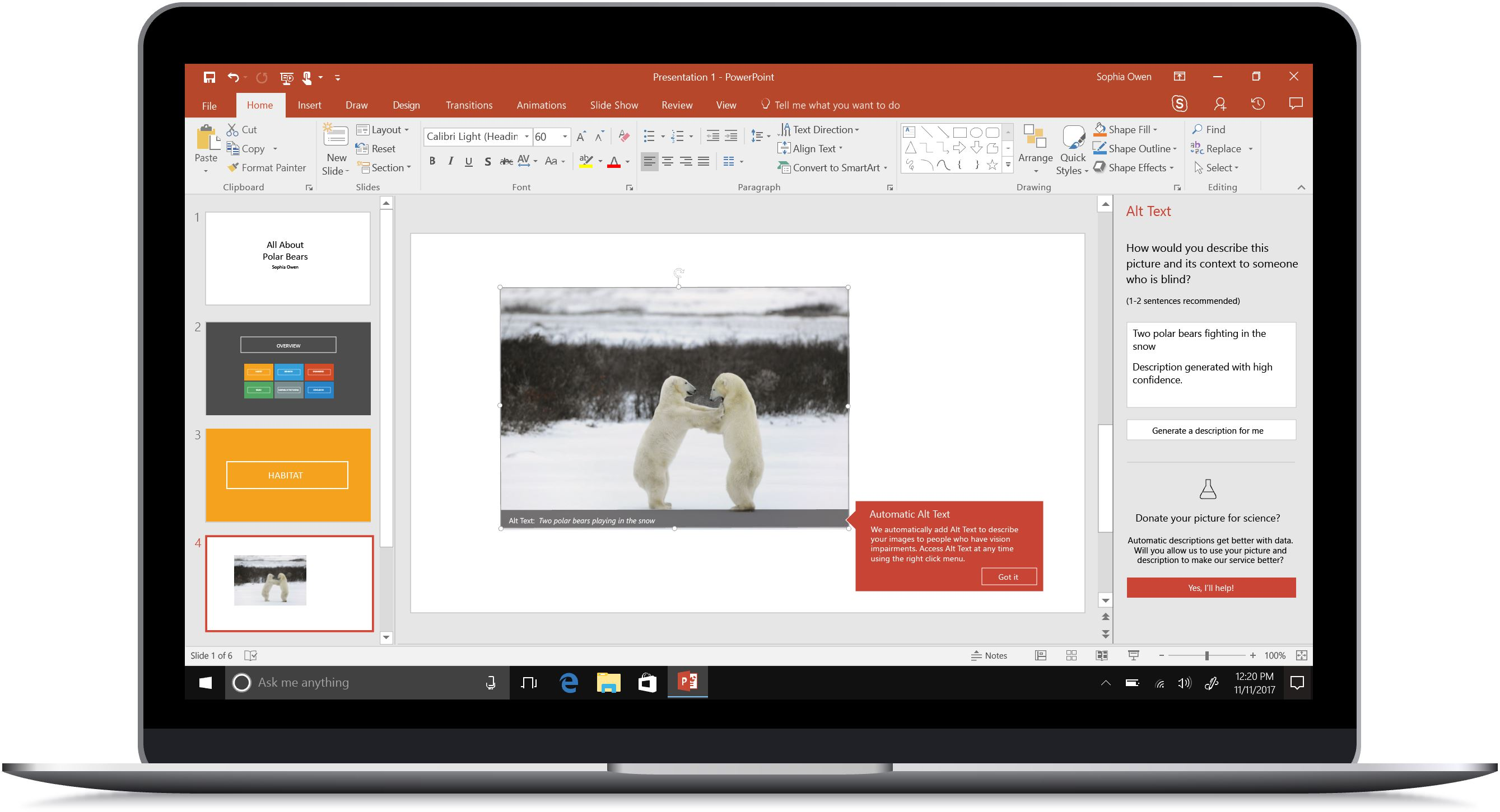 Mockup of a computer with auto alt text in PowerPoint captioning a photo of two polar bears.